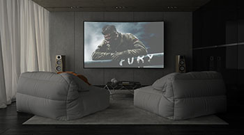White or Gray Projector Screen Surface?
